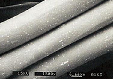 光電子®繊維顕微鏡画像