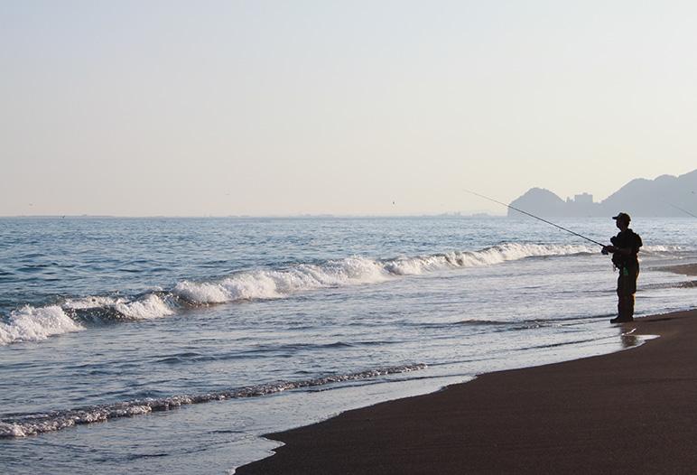 静岡県の海岸線