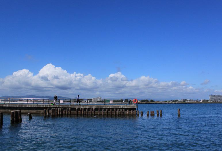 浜名湖新居海釣公園