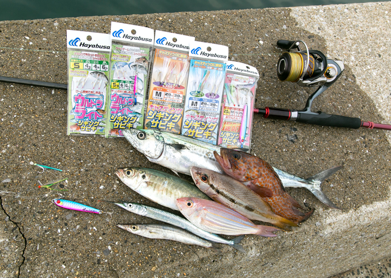 合計8種類の魚