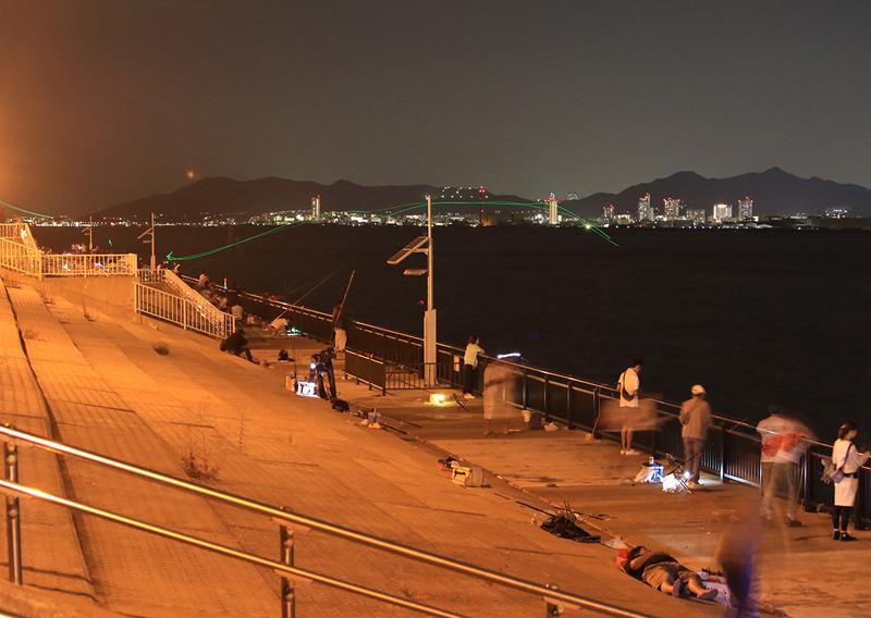 夜釣りシーン