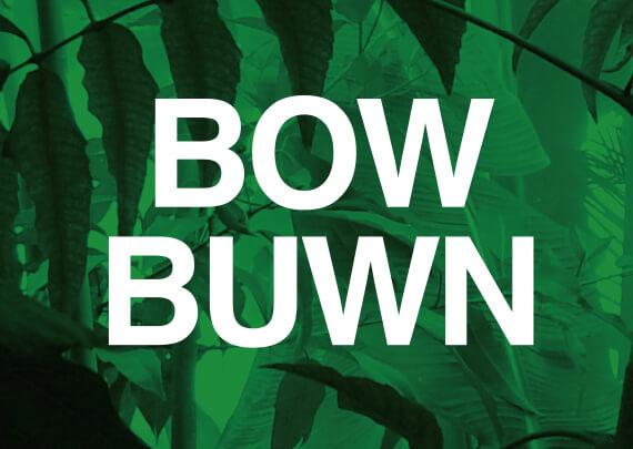 BOWBUWNラインナップ