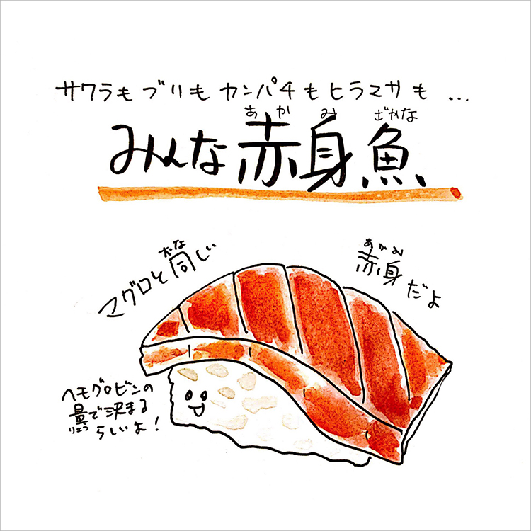 04_みんな赤身の魚