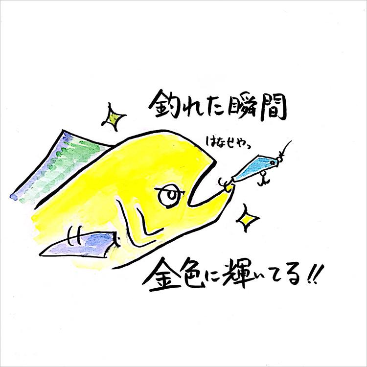 02_金色に輝くシイラ