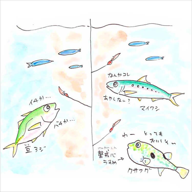 02_マイワシ・豆アジ・クサフグ
