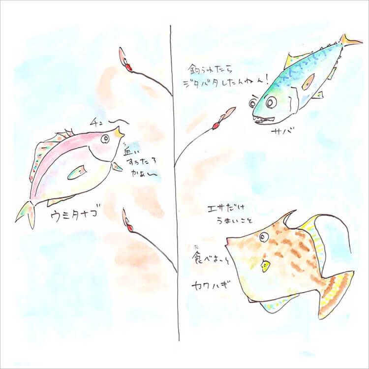 03_サバ・ウミタナゴ・カワハギ
