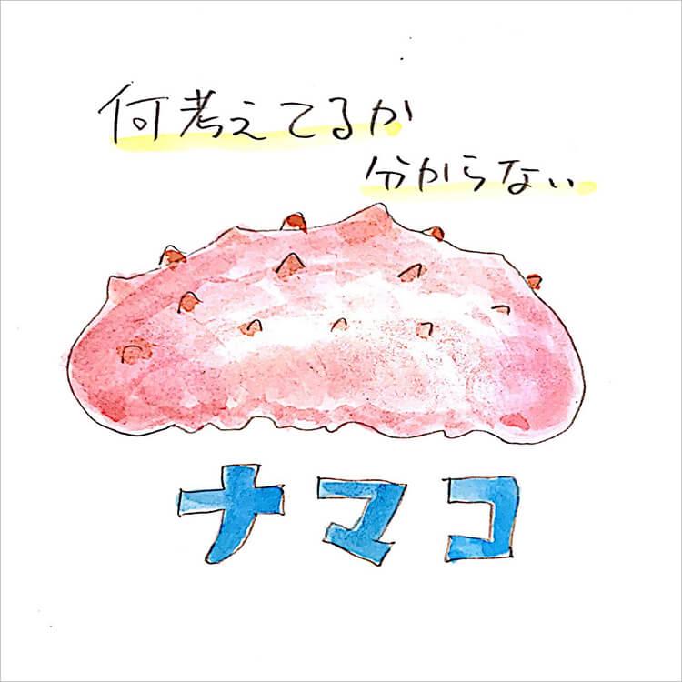 01_ナマコ
