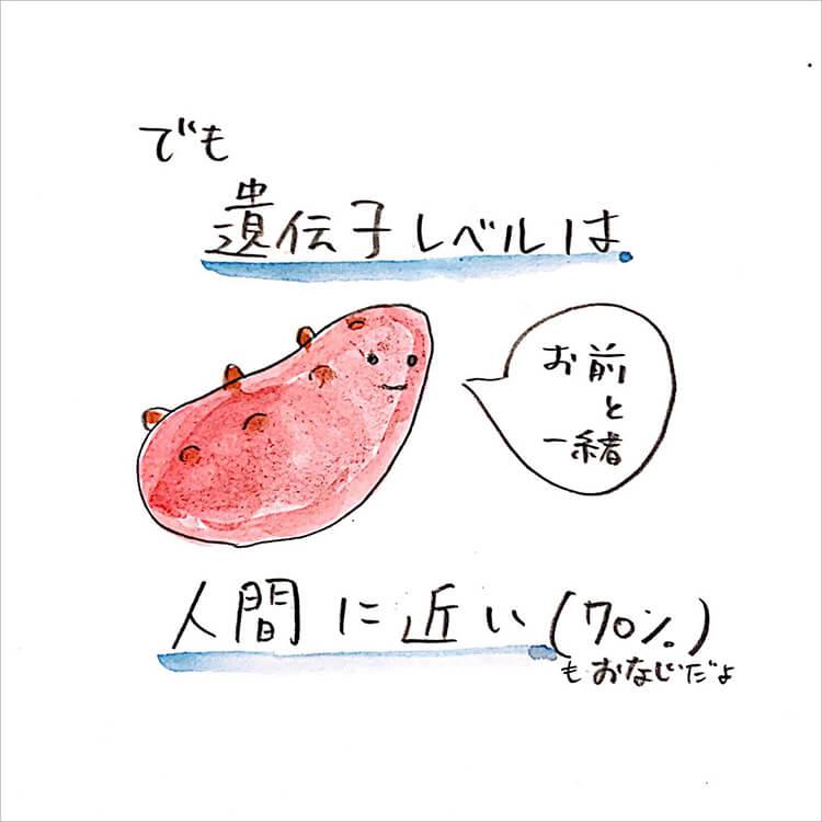 04_人間に近い生き物