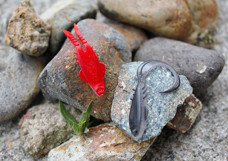 石の上にワームがのっている