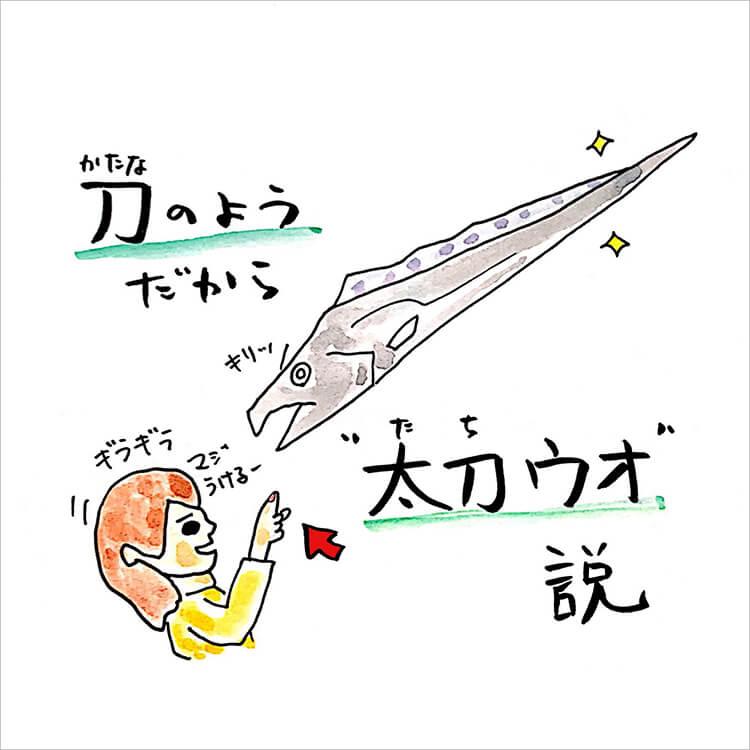 03_太刀ウオ説