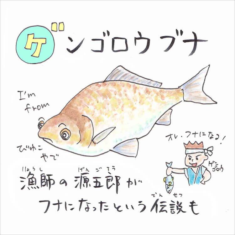 02_4 ゲンゴロウブナ