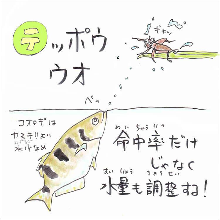 04_4 テッポウウオ