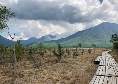 CAP_06.jpg 戦場ヶ原や湿原の風景