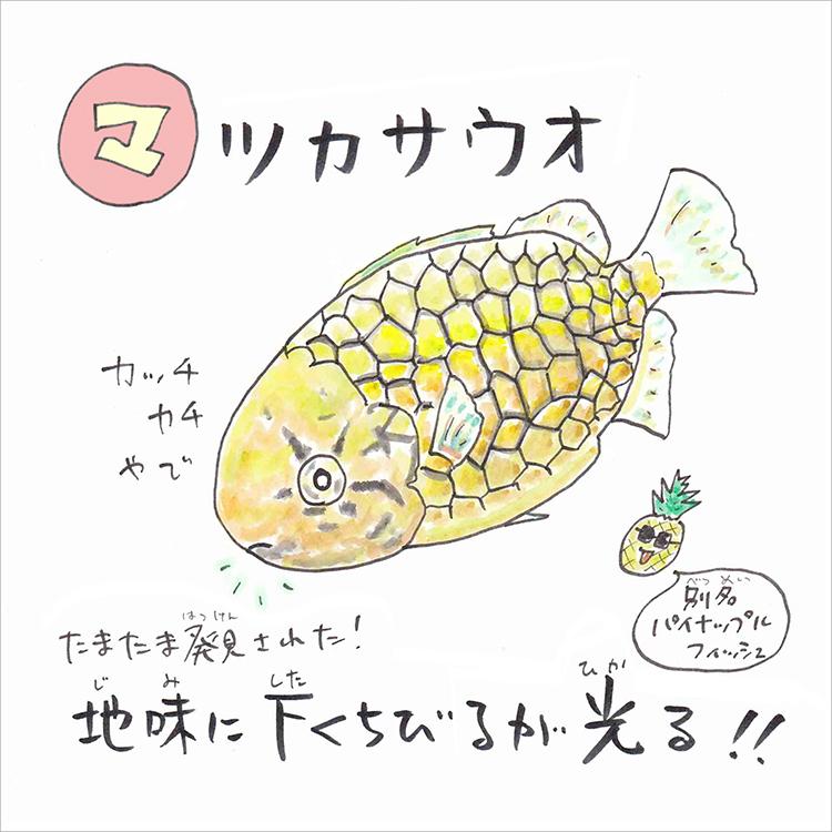 03_1 マツカサウオ