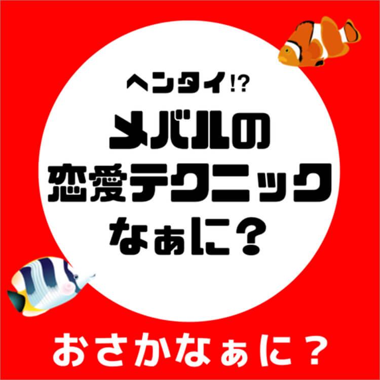 04_2-1 メバル問題