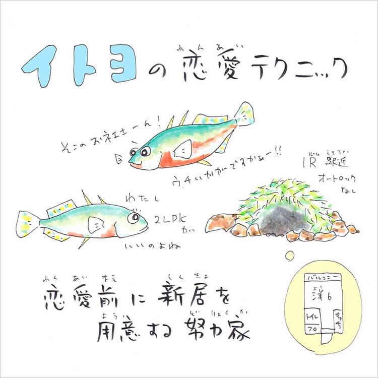 04_3-2 イトヨ答え