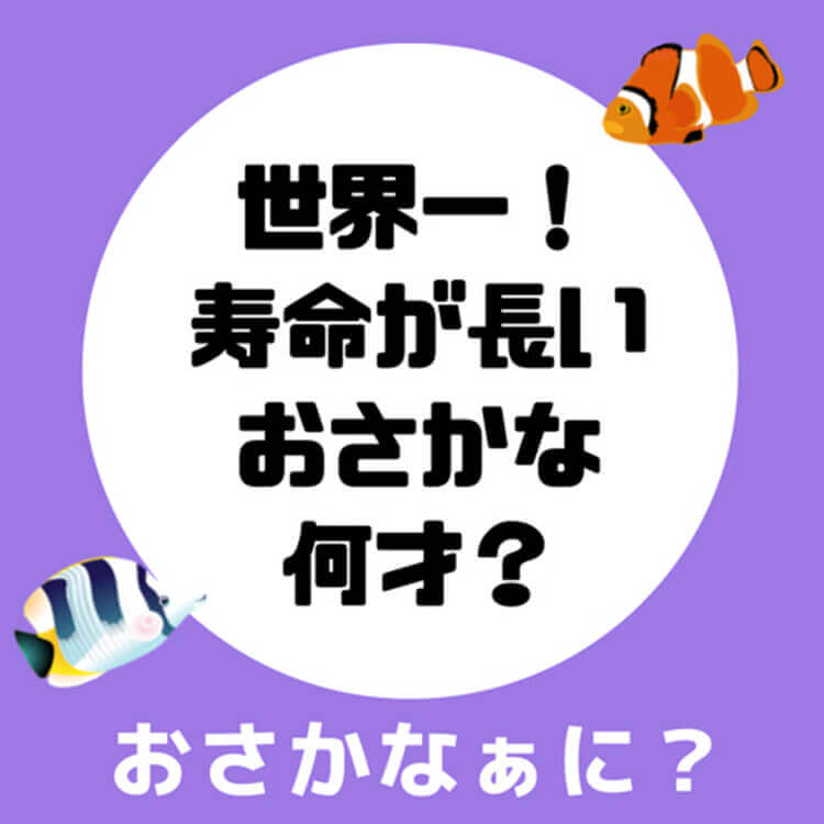 01_2-1 世界一寿命が長いさかな問題
