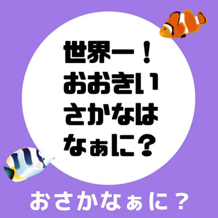 01_3-1 世界一大きなさかな問題