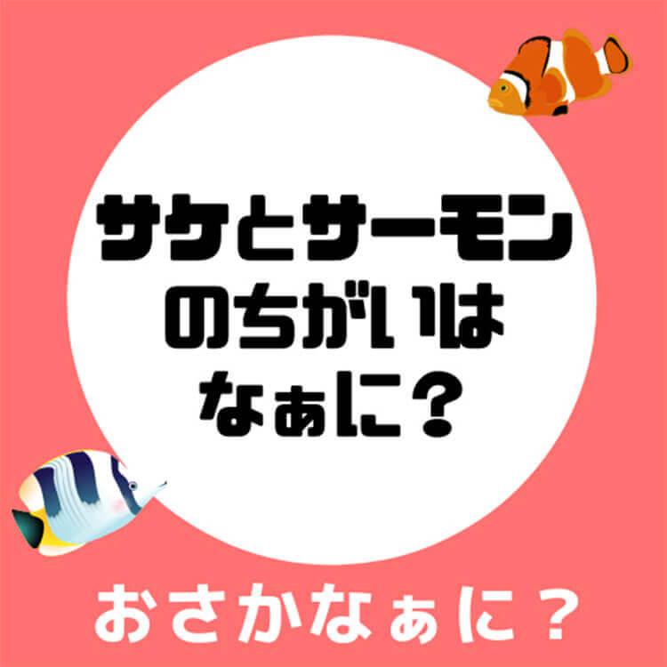 03_1-1 サケとサーモンの違い問題