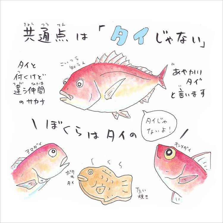 04_3-2 アマダイ・キンメダイ・たい焼き答え