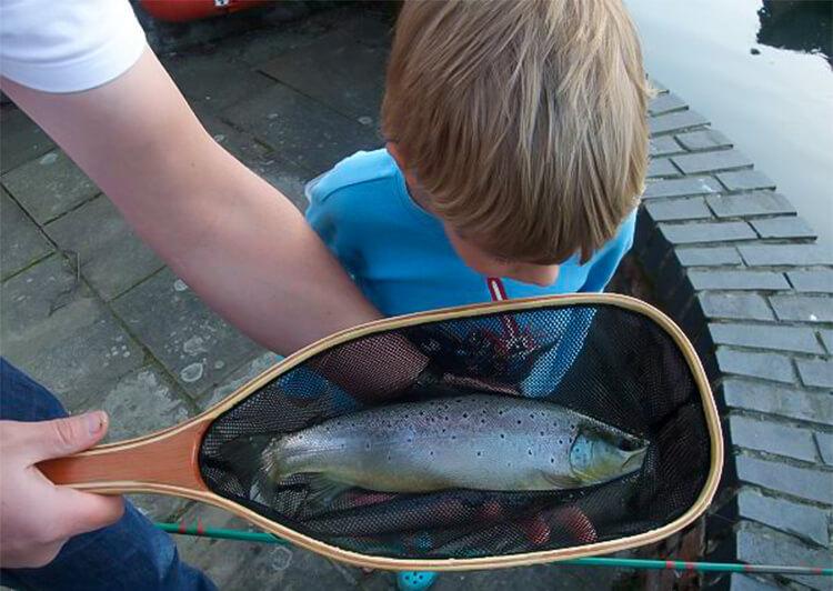 5 魚を覗き込む少年