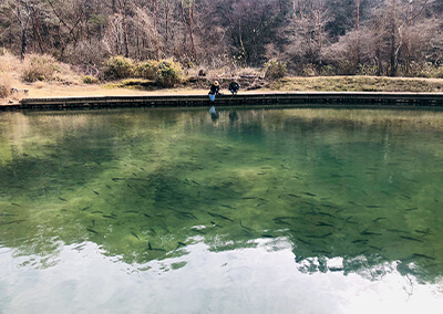 07_オープンウォーター.JPG 管理釣り場の水面