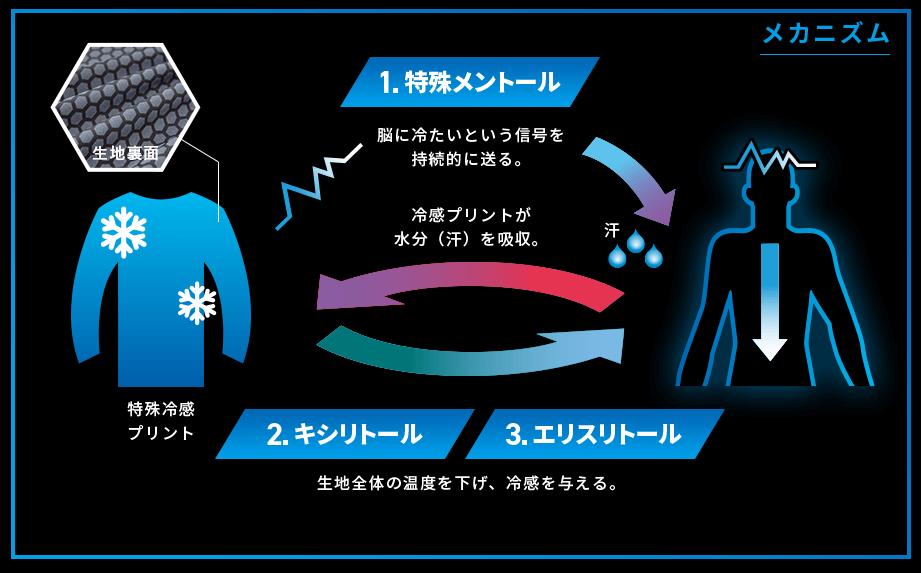 メカニズムのイメージ図