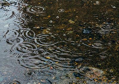 01_ 雨の水たまり(フリー素材・写真AC)