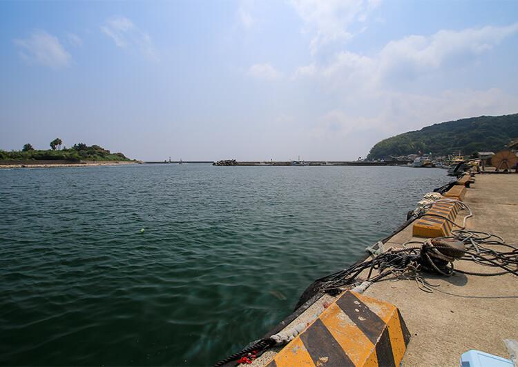 10_ IMG_0786_2020.JPG 漁港
