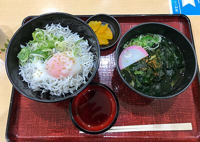 16_ シラス丼