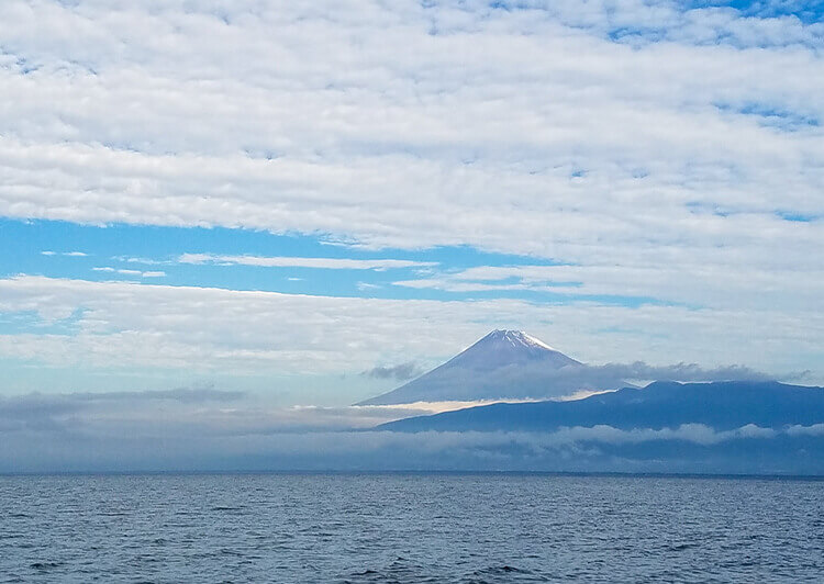 12_ 駿河湾と富士