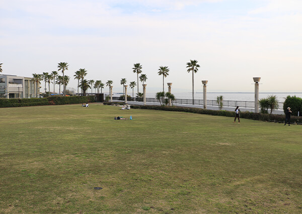 鳴尾浜臨海公園海づり広場