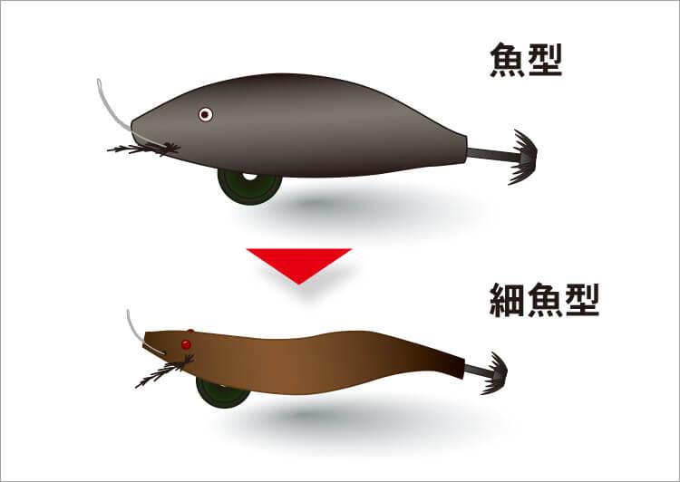 03_ 魚型と細魚型のイラスト