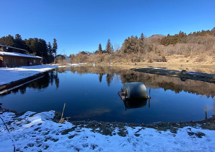 03_Pond
