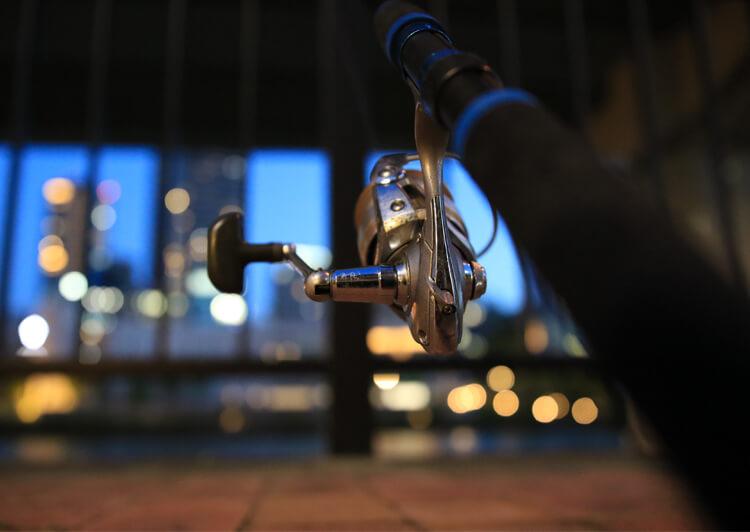 22_ IMG_2510 夜景に映える釣り竿