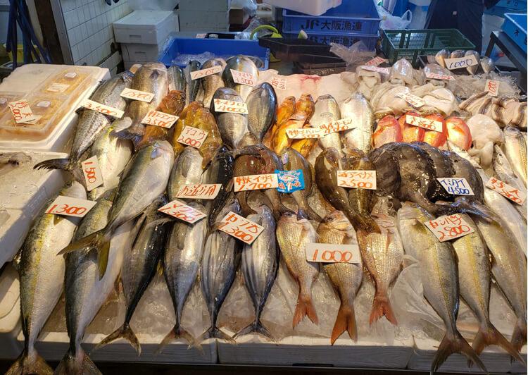 08_ 売り場に並ぶ魚たち